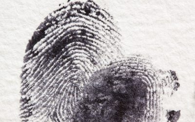 fur-finger-black-security-ink-criminal-1110073-pxhere.com